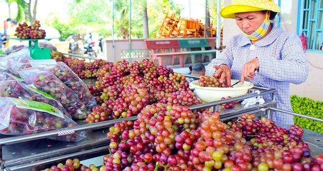Gần Tết, đặc sản giá cao nở rộ ở Sài Gòn