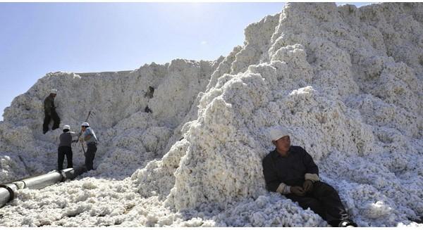 Thế giới đang thừa 127 tỷ... chiếc áo thun và đây là nguyên nhân
