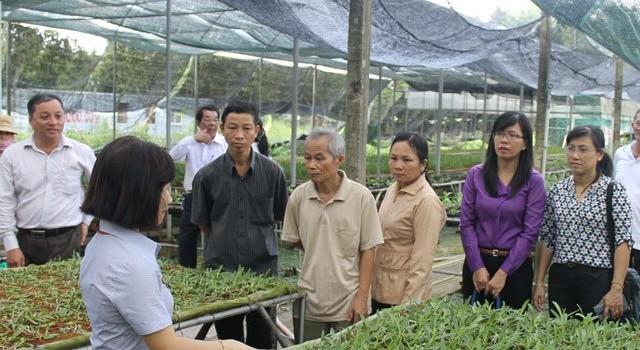 TP.Hồ chí minh tái cơ cấu nền nông nghiệp: Động lực là khoa học công nghệ