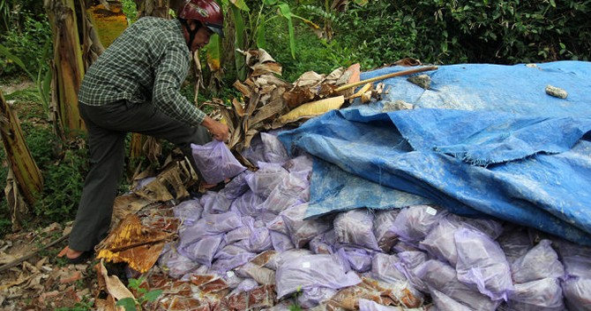 Đổ lén hàng tấn gia vị hết đát ra môi trường