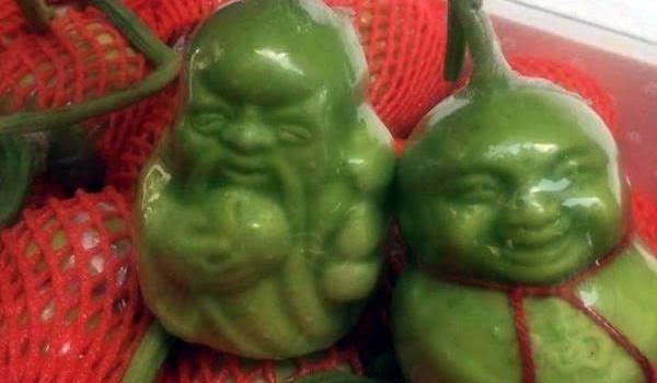 """Dưa thần tài Trung Quốc: Rẻ vẫn ế vì """"không nên ăn"""""""
