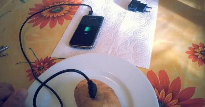 Sạc pin điện thoại bằng hoa quả, bạn đã nghĩ đến chưa?