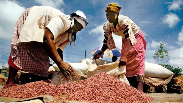 Thị trường châu Phi: Những rào cản từ bên trong
