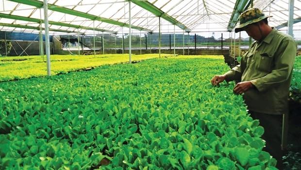 Đầu tư sang Lào: Nhiều ưu đãi nhưng vẫn e dè