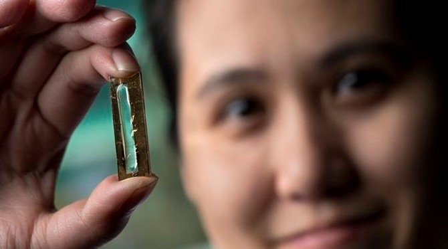 Cô gái gốc Việt phát minh công nghệ pin bền trọn đời