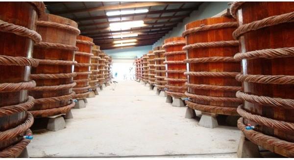 Cá cơm - nguồn nguyên liệu đặc chế mắm Phú Quốc danh tiếng đang cạn kiệt