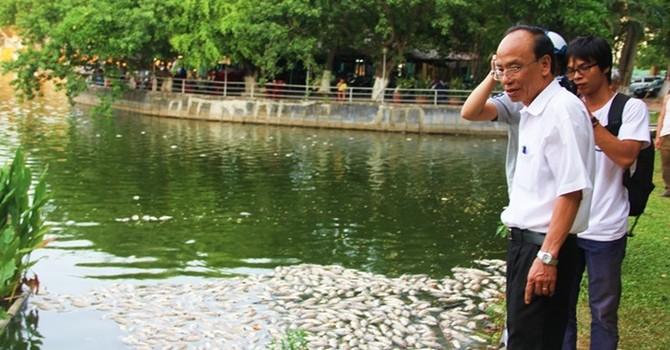 Cá chết nổi trắng mặt hồ ở Đà Nẵng