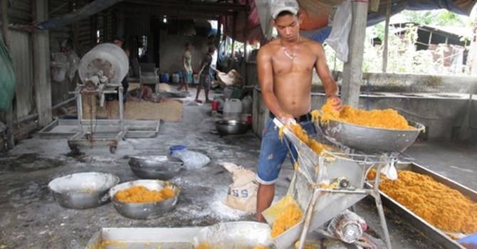"""Thị trường 24h: """"Việt Nam đang thừa nông sản bẩn, thiếu nông sản sạch"""""""
