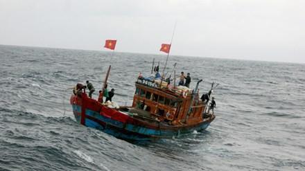 Ai trục lợi bảo hiểm tàu cá: Câu hỏi vẫn bỏ ngỏ