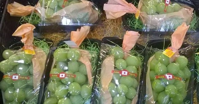 Hoa quả Nhật - Hàn đắt khách tại Việt Nam