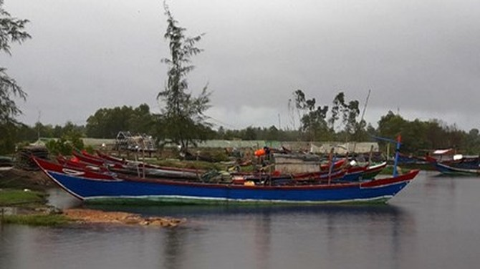 """Hỗ trợ ngư dân hậu Formosa: Mới kê khai, lên danh sách đã """"loạn"""""""
