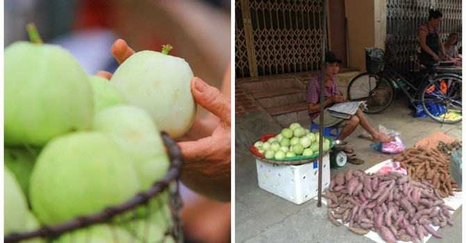 Dưa lê trái mùa 35.000 đồng/kg hút khách ở Hà Nội