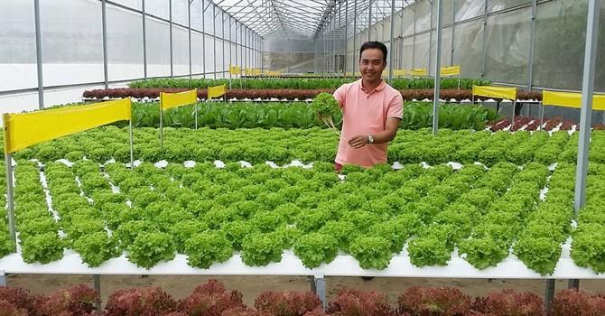 Chàng trai Đà Lạt quyết làm nông sản tử tế