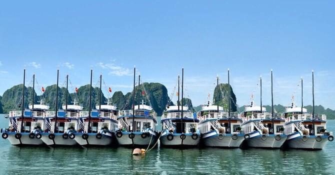 Quảng Ninh: 7 chủ tàu … lãng phí 30 triệu đồng mỗi ngày?!