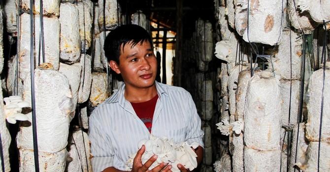 Tự tạo cơ hội: Làm giàu từ trại nấm