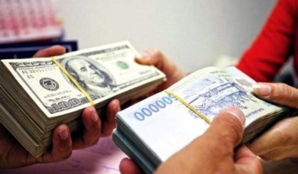 USD lên giá bằng Euro: Ôm đôla lãi bỏng tay