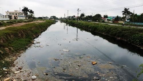 """Dòng sông """"đông đặc"""" vì nước thải, nghìn ha lúa nguy cơ mất trắng"""