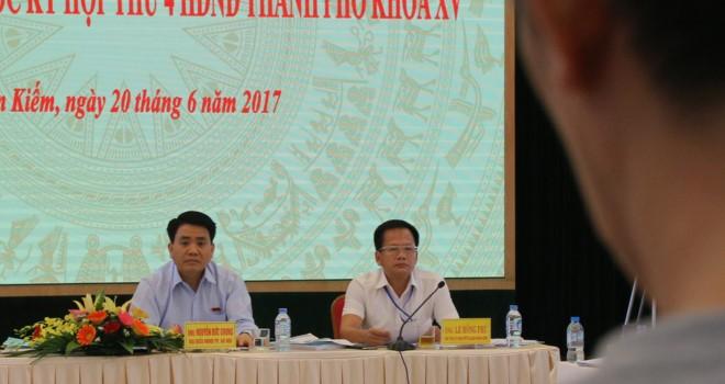 """Chủ tịch Hà Nội: """"Không thể trồng lại xà cừ cổ thụ trên các tuyến phố"""""""