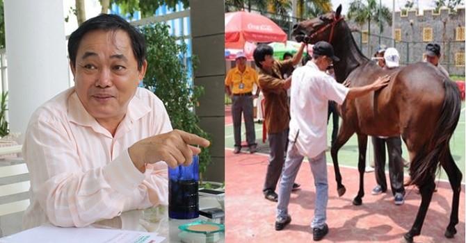 """Mở trường đua ngựa 100 triệu USD, ông chủ Khu du lịch Đại Nam có """"nói một đằng làm một nẻo""""?"""