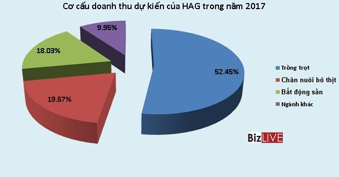 """HAGL: Năm 2017, mục tiêu doanh thu 6.335 tỷ, đóng góp chủ yếu từ """"nhân tố"""" mới"""