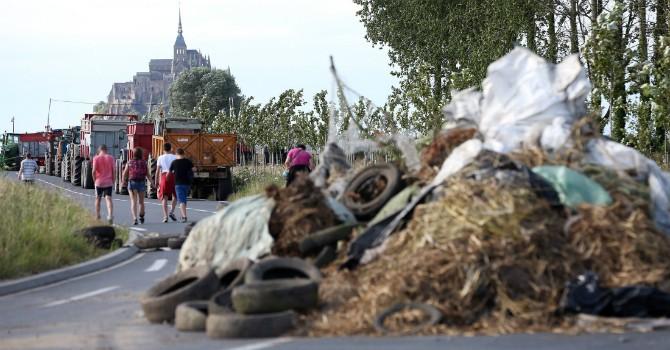 Lệnh cấm vận của Nga khuynh đảo thị trường nông sản châu Âu