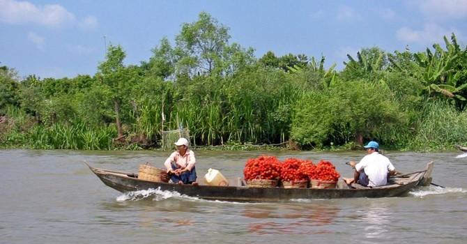 """Đua nhau xây đập thủy điện """"giết"""" sông Mekong: Các nước """"tự bắn...chân mình"""""""