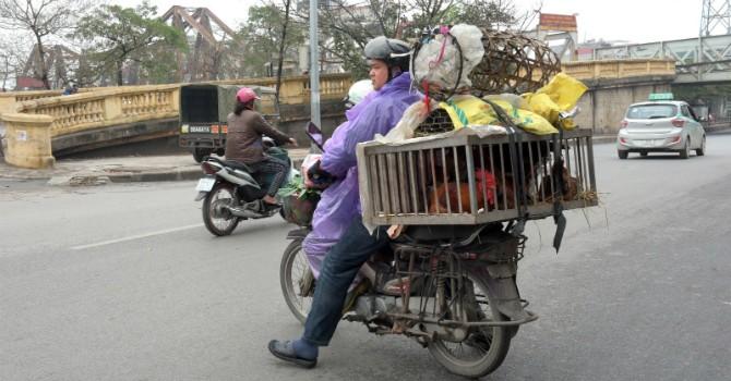 HSBC: Kinh tế Việt Nam quý I tăng trưởng nhờ Samsung ra sản phẩm mới
