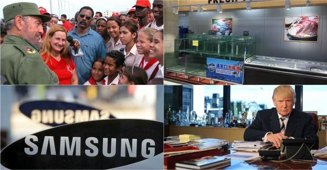 Thế giới 24h: Ông Donald Trump phản đối tái kiểm phiếu, Samsung có thể bị xẻ đôi