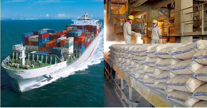 Lỗ tỷ giá không ảnh hưởng nhiều đến doanh nghiệp vận tải biển và xi măng