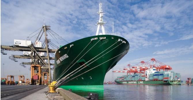 VSC sẽ phát hành cổ phiếu VIP-Green cho hãng tàu EverGreen
