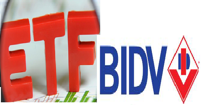 Cơ cấu danh mục của V.N.M ETF sau khi loại BID