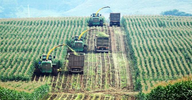 """Làm sao để giải """"cơn khát vốn"""" cho doanh nghiệp nhỏ và vừa nông nghiệp?"""