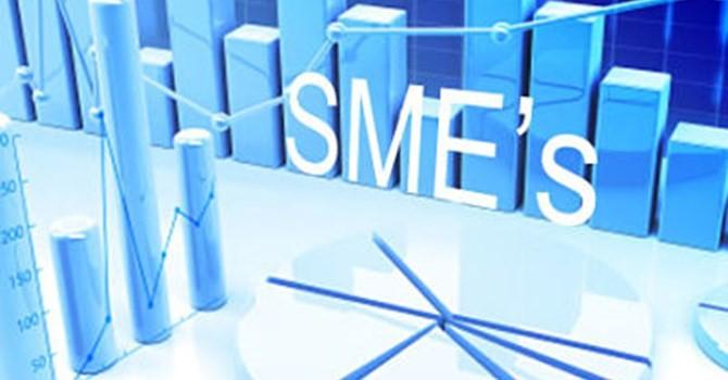 TP.HCM: cho vay tháo gỡ khó khăn cho doanh nghiệp tăng nhỏ giọt