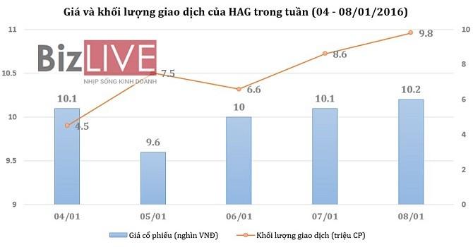 [Cổ phiếu nổi bật tuần] Khi HAG lần đầu về dưới mệnh giá