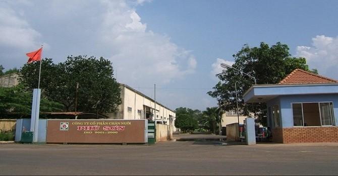 Chăn nuôi Phú Sơn dự kiến mức chia cổ tức 100%