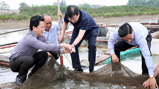 """Xử lý nghiêm vụ cán bộ Tổng cục Thủy sản """"lừa dối"""" nông dân cả nước"""
