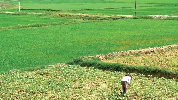 Duyệt quy hoạch sử dụng đất huyện Thường Tín đến 2020