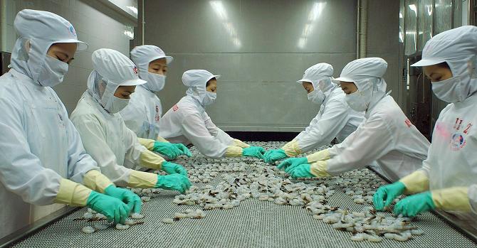 Thủy sản Minh Phú trình chia cổ tức 10.000 đồng/cổ phiếu