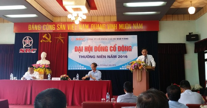 """ĐHĐCĐ Cao su Sao Vàng: """"Dự án 231 Nguyễn Trãi không phải là mục tiêu hiện nay vì không có tiền"""""""