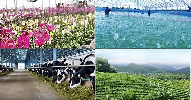 Hôm nay 7/5: Hội thảo về đầu tư vào nông nghiệp Quảng Ninh diễn ra tại Quảng Ninh