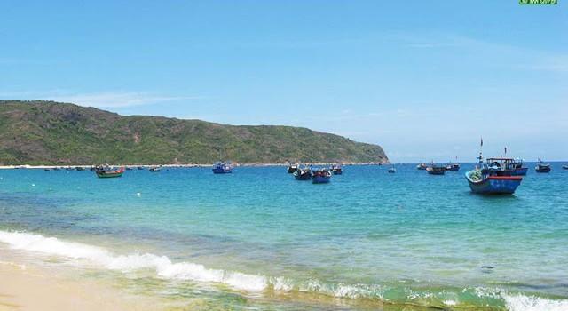 Xem xét nhấn chìm 439.000m3 bùn đất nạo vét cảng tại vùng biển Quy Nhơn