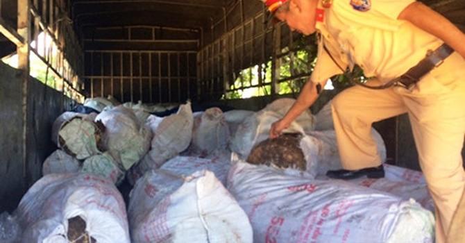 Bắt xe tải chở 6 tấn mỡ động vật không rõ nguồn gốc