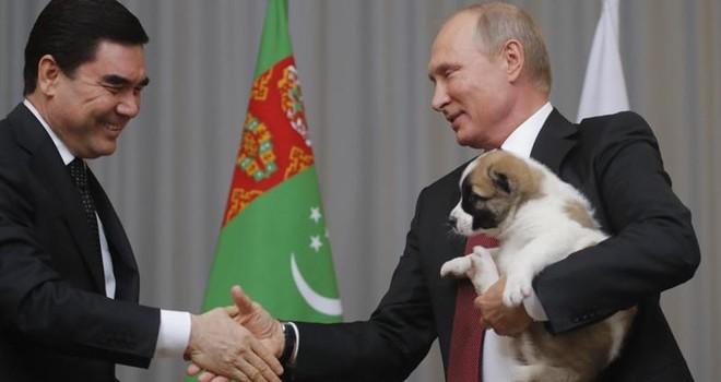 Tổng thống Putin được tặng chó quý nhân ngày sinh nhật