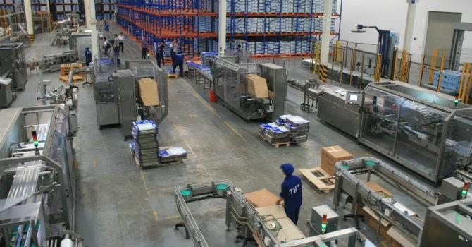 Trang trại bò sữa của TH True Milk đạt quy mô lớn nhất châu Á