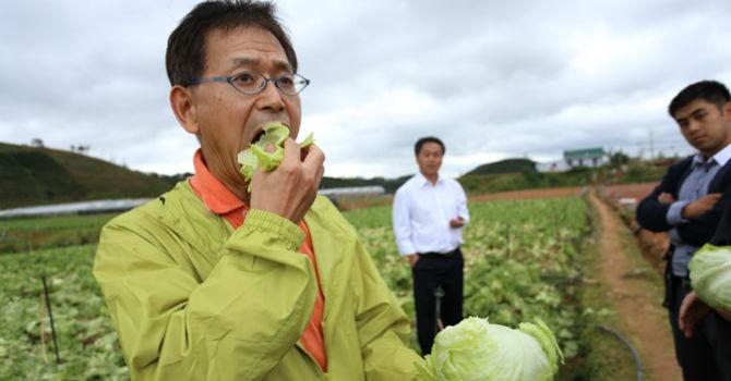 Hút đầu tư vào nông nghiệp sạch trừ doanh nghiệp Trung Quốc