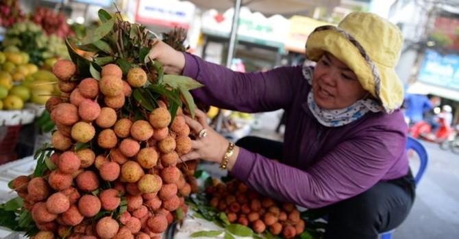 Trung Quốc gia tăng mua vải thiều Việt Nam, cạnh tranh mạnh tại Mỹ