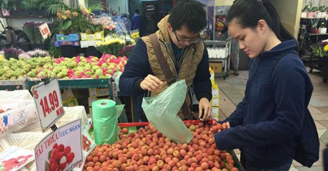 Thị trường 24h: Vì sao giá vải thiều Việt Nam cao hơn Úc, Thái Lan, Trung Quốc?