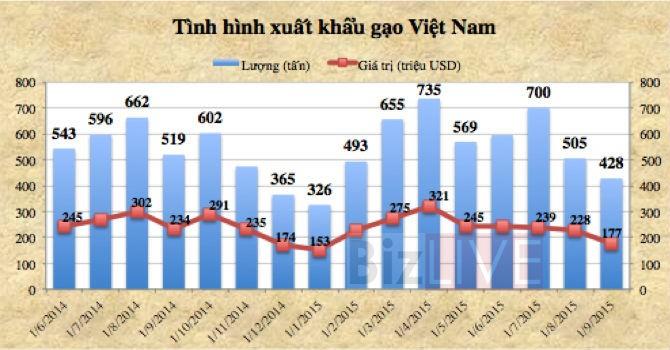 Xuất khẩu gạo tiếp tục giảm mạnh vì Trung Quốc thay đổi chính sách