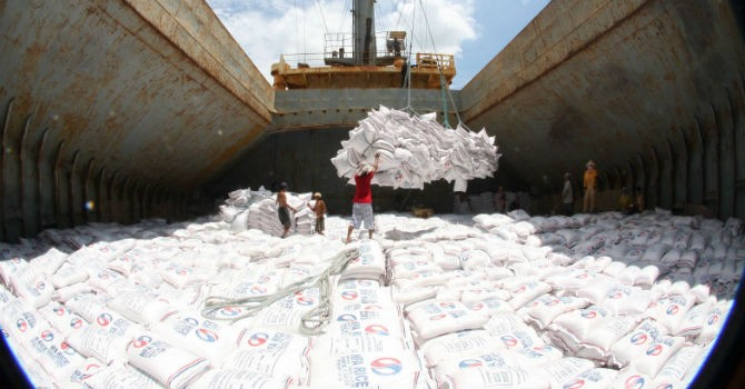 Thị trường 24h: Gạo Việt không được lợi gì từ TPP khi vào thị trường Nhật