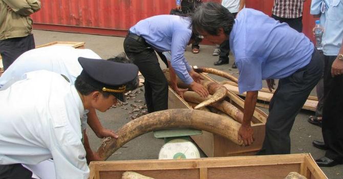 """Tổng cục Hải quan nói gì về nghi vấn cán bộ """"tiếp tay"""" cho buôn lậu ở Lạng Sơn?"""